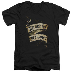 Image for Harry Potter V Neck T-Shirt - Michief Managed Ribbon