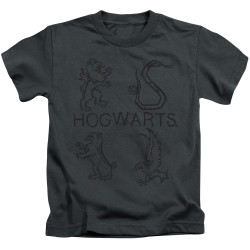 Image for Harry Potter Literary Crests Kid's T-Shirt