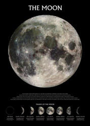 Image for The Moon Poster - Phases