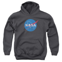 Image for NASA Youth Hoodie - Meatball Logo Distressed