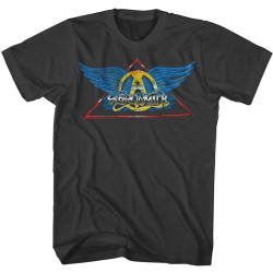 Image for Aerosmith T-Shirt - Classic Wings