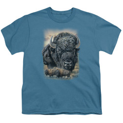 Image for Wild Wings Collection Youth T-Shirt - Sunset Buffalo