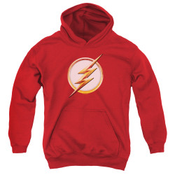 Image for The Flash TV Youth Hoodie - Season 4 Logo