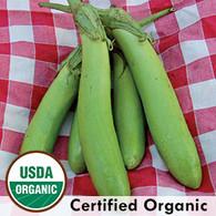 Thai Green Eggplant Organic