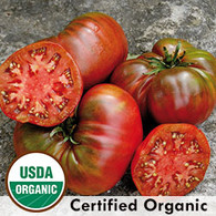 Black Sea Man Tomato Organic