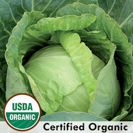 Copenhagen Market Cabbage Organic