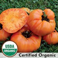 Kelloggs Breakfast Tomato Organic