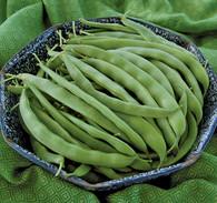Bountiful Bean
