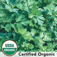 Giant from Italy Parsley Organic