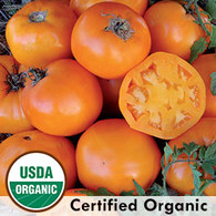 Nebraska Wedding Tomato Organic