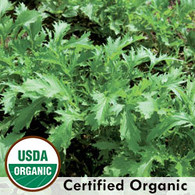 Mizuna Asian Green Organic Seeds - Seeds Savers Exchange | Amish Country Store in Branson, Missouri