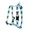 """Blue and Brown Skulls Roman Style """"H"""" Dog Harness"""