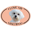 I Love My Maltipoo Colorful Oval Magnet
