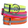 REFLECTIVE 1.5In WIDE SunGlo All Weather Dog Collar