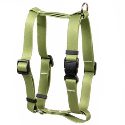 "Solid Olive Roman Style ""H"" Dog Harness"