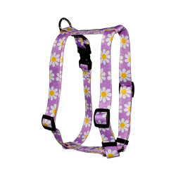 "Lavender Daisy Roman Style ""H"" Dog Harness"