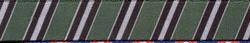 Team Spirit Green, Black and Silver EZ-Grip Dog Leash