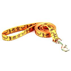 Tribal Seas Orange Dog Leash