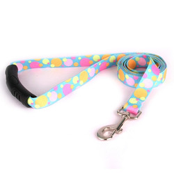 Circles Dog Leash