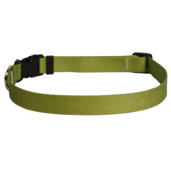 Solid Olive Dog Collar
