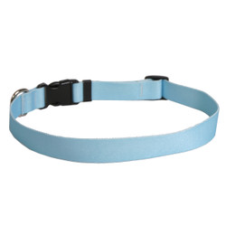 Solid Light Blue Dog Collar