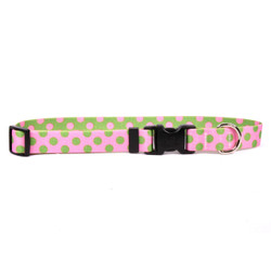 Pink and Green Polka Dot Dog Collar with Tag-A-Long