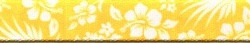 Aloha Yellow Waist Walker