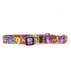 Safari Martingale Dog Collar