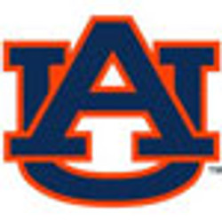Auburn Step-In Dog Harness