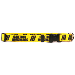 1 Inch - Caution Working Dog Dog Collar