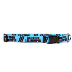 1 Inch - Caution Leg Humper Dog Collar
