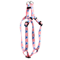 Crab Crazy Step-In Dog Harness