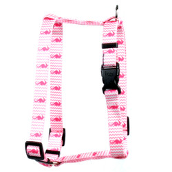 "Silly Seahorses Roman Style ""H"" Dog Harness"