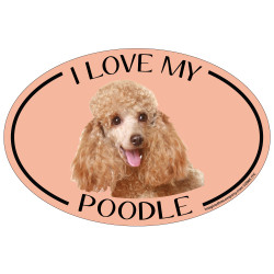 I Love My Poodle Colorful Oval Magnet