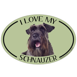 I Love My Schnauzer Colorful Oval Magnet
