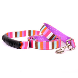 Multi-Stripe Uptown Dog Leash