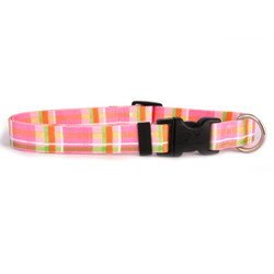 Madras Pink Break Away Cat Collar