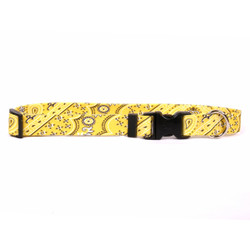 Bandana Yellow Break Away Cat Collar