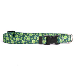 4 Leaf Clover Break Away Cat Collar