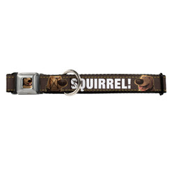 Dug Tongue Out Squirrel! Buckle-Down Seat Belt Buckle Dog Collar