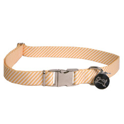 Southern Dawg Seersucker Orange Premium Dog Collar