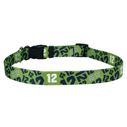 12th Dog Green Dog Collar with Tag-A-Long