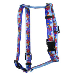 Coral Reef Roman Style H Dog Harness