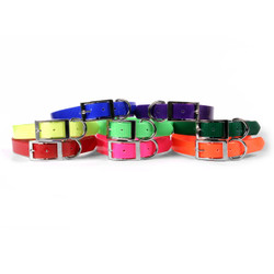 SunGlo All Weather Dog Collar