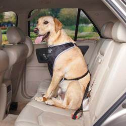 Berber Lined Car Seat Harness