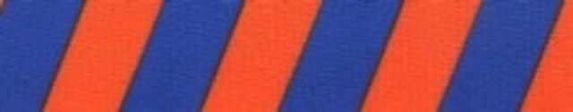 Team Spirit Orange and Blue Waist Walker