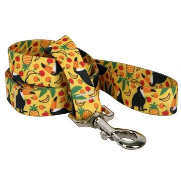 Fruity Tucan Dog Leash
