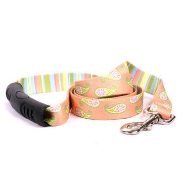 Melon Paisley EZ-Grip Dog Leash