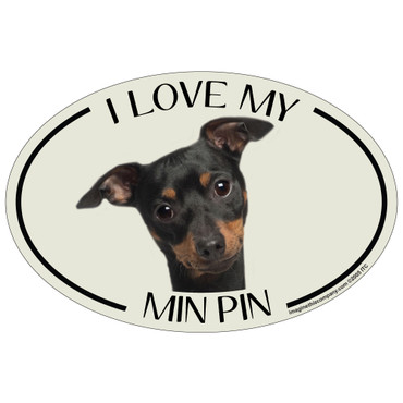 I Love My Min Pin Colorful Oval Magnet