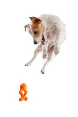 Zogoflex Tizzi - Dog Toy
